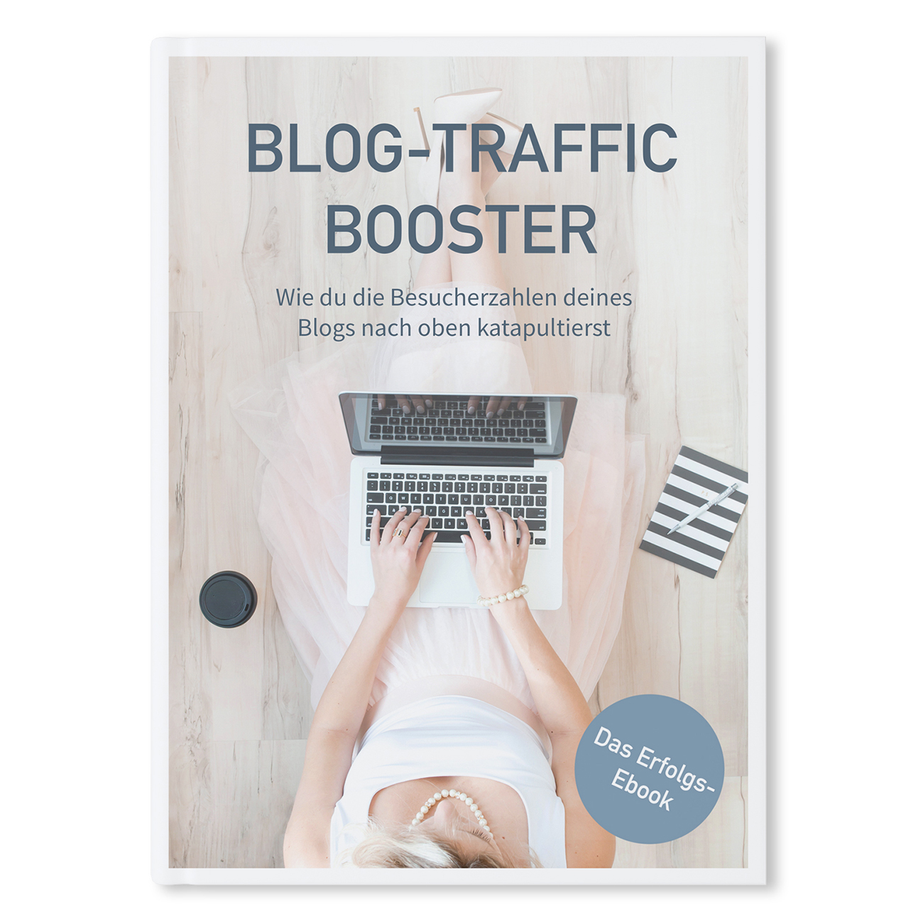 "Taschenbuch & E-Book ""Blog-Traffic Booster"""
