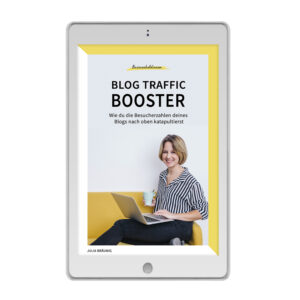 "E-Book ""Blog-Traffic Booster"""