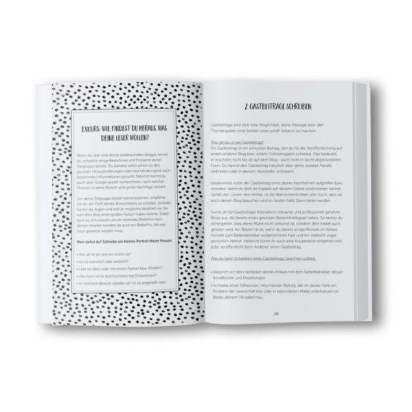 """Taschenbuch """"Blog-Traffic Booster"""""""